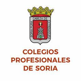 Colegios Profesionales